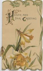 HEALTH AND FAIR GREETING (H & G illuminated) above  daffodils, leafy marGinal design, embossed,