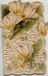 GREETINGS in gilt on much perforated  front with white & orange cyclamen