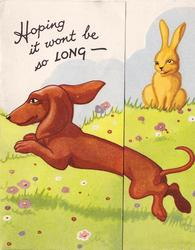 HOPING IT WONT BE SO LONG- dachshund jumps left, yellow rabbit right