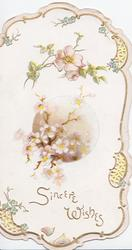 SINCERE WISHES  in gilt at base, white & pale pink apple blossom above, gilt perforated marginal design