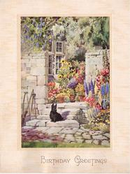BIRTHDAY GREETINGS black schnauzer sits on stone steps, flower gardens, sunflowers at window