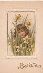 BEST WISHES in gilt below inset of girl among the daffodils, she faces front