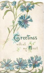 GREETINGS WITH ALL MY HEART(G & H illuminated), blue cornflowers on white background