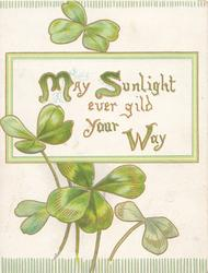 MAY SUNLIGHT EVERGILD YOUR WAY (M, S & W illuminated) on white inset, clover