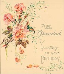 GREETINGS ON YOUR BIRTHDAY below TO MY DEAR GRANDAD 3 pink roses & buds with white floral sprays