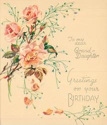 GREETINGS ON YOUR BIRTHDAY below TO MY DEAR GRAND-DAUGHTER 3 pink roses & buds with white floral sprays