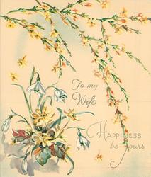 HAPPINESS BE YOURS sprays of yellow jasmine above  TO MY WIFE snowdrops & yellow asters left