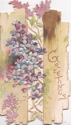 GREETINGS in gilt on right slat of fence, blue & purple lilac grows through, perforated
