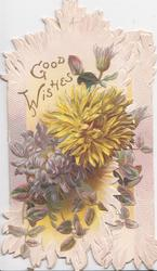 GOOD WISHES in gilt above yellow & purple chrysanthemums on both flaps, purple/white background