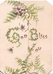 GOD BLESS YOU(G,B,Y, illuminated) on white background violets & ferns around as part of design