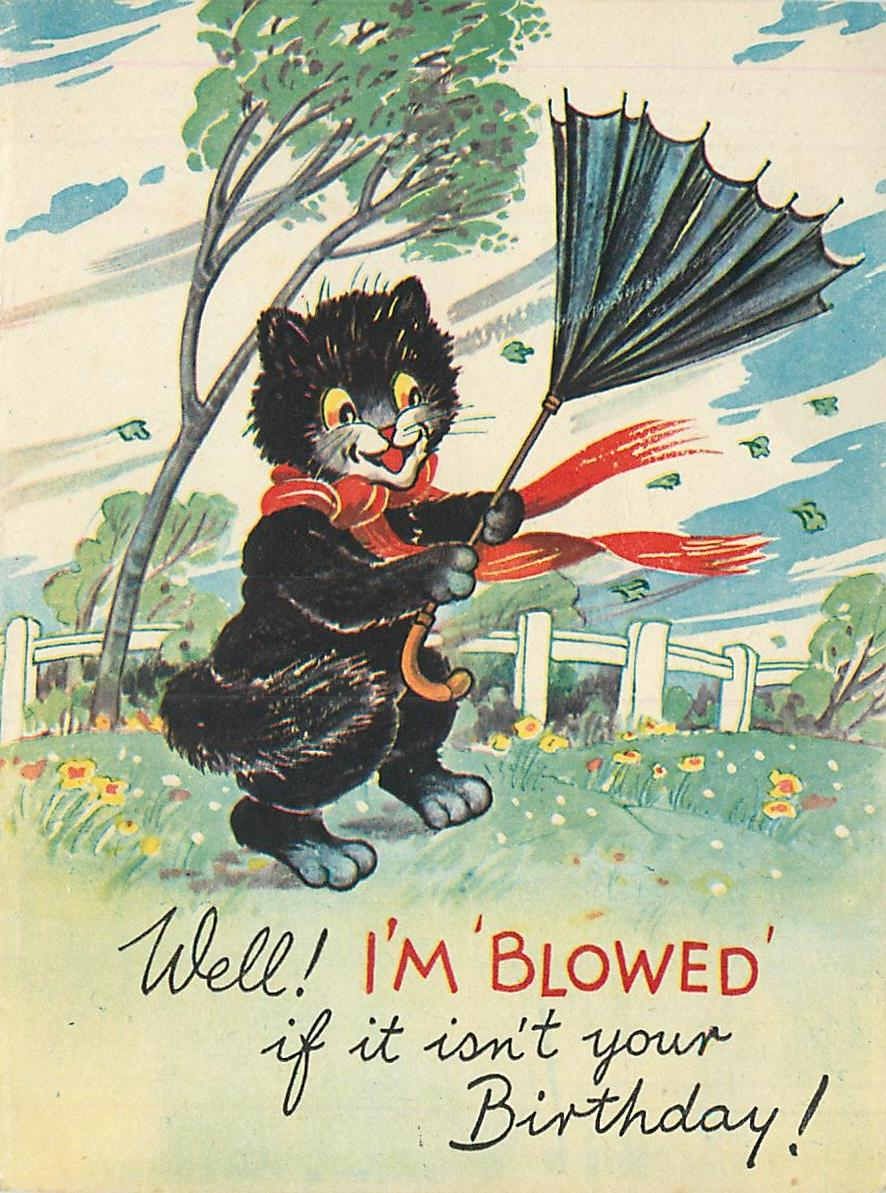 WELL! I'M 'BLOWED' IF IT ISN'T YOUR BIRTHDAY! personised black cat holds umbrella that has blown inside-out from the wind