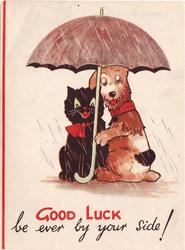 GOOD LUCK BE EVER BY YOUR SIDE!  black cat with red bow & dog sitting under large umbrella, facing front