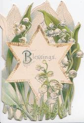BLESSINGS(B illuminated) across star inset, perforated, lilies-of-the-valley, stylised white leaves