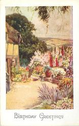 BIRTHDAY GREETINGS corner of cottage with flower garden, farm fields distant view