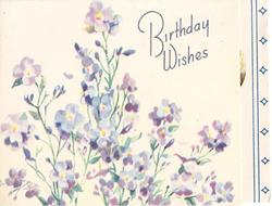 BIRTHDAY WISHES lilac wallflowers, panel with two blue stripes & small diamonds right