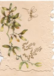 GOOD WISHES(G &W illuminated & glittered) mistletoe leaves & berries, white background & design
