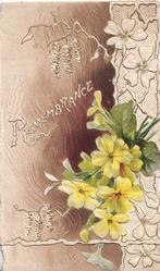 REMEMBRANCE in white on brown designed background, yellow primroses right in front of white design