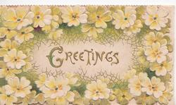 GREETINGS in gilt on white inset surrounded by yellow primroses on green design