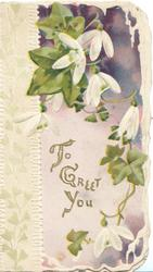 TO GREET YOU in gilt below white cyclamen,  purple background, white design left