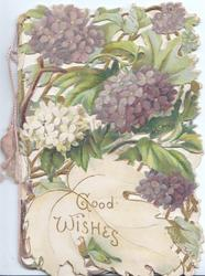 GOOD WISHES in gilt below purple & white  hydrangeas on perforated front