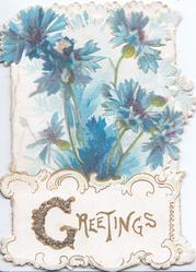 GREETINGS(G illuminated & glittered) on white plaque at base below blue cornflowers