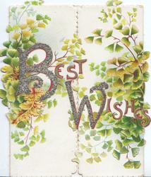 BEST WISHES (B &W illuminated & glittered) ginkgo leaves on both front flaps, embossed