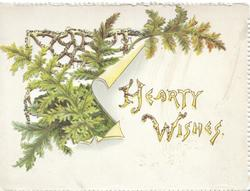 HEARTY WISHES(H&W illuminated) below ferns & perforated gilt design