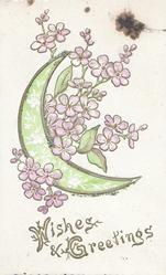 WISHES & GREETINGS below glittered sliver of green moon in front of violets
