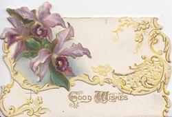 purple iris on top flap above GOOD WISHES on bottom flap, elaborate yellow perforated marginal design