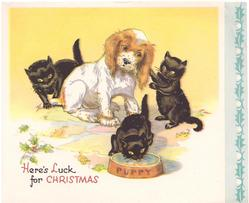 HERE'S LUCK FOR CHRISTMAS 3 black kittens encircle spaniel, front kitten drinks from PUPPY's bowl, panel of holly right