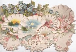 GREETINGS in gilt below forget-me-nots over 3 shells with seascape insets, marginal  forget-me-nots