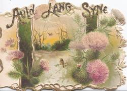 AULD LANG SYNE(illuminated glittered gilt) thistles, rural landscape with central tiny robin, green ribbons, perforated