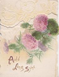 AULD LANG SYNE(A,L &S illuminated)  in gilt below thistles & white embossed design