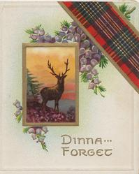 DINNA FORGET in gilt, purple heather below tartan & above gilt margined inset of stag