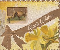 GOOD WISHES in white on gilt ribbon below rural inset & above daffodils, white flowery background