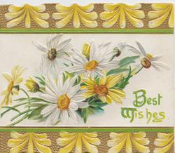 BEST WISHES(B & W illuminated ) in green, white & yellow daisies between top & bottom gilt & yellow designs