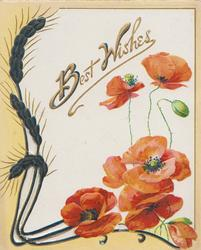 BEST WISHES in gilt on white background, red poppies below right, yellow & black barley perforated design left & below