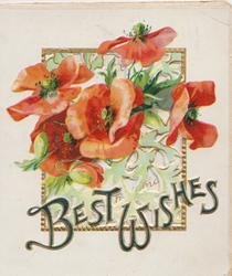 BEST WISHES(B & W illuminated) in gilt,red poppies above coming through perforated gilt bordered window
