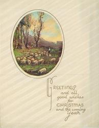 GREETINGS AND ALL GOOD WISHES FOR CHRISTMAS AND THE COMING YEAR many sheep grazing, poplar trees in disntance