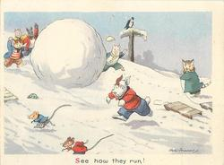 SEE HOW THEY RUN! many animals play in snow, giant snowball, white dog chases two mice