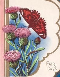 FAIR DAYS, bottom right butterfly & thistles on die-cut flap