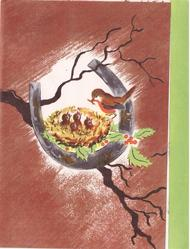 no front title, horseshoe with inset robins & nest, winter branch, holly, brown background, green panel right