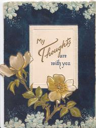 MY THOUGHTS ARE WITH YOU on white plaque above white wild roses, forget-me-not border, black background