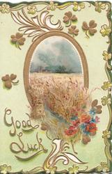 GOOD LUCK in gilt below red poppies & field of barley, oval inset & elaborate perforated leafy design, pale green background