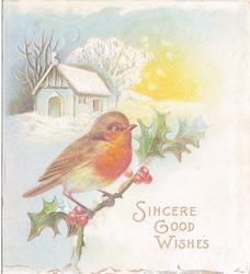 SINCERE GOOD WISHES, robin perched on holly branch, cabin in background, snow scene