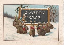 A MERRY XMAS on black sign in front of class of rabbits, one wearing dunces cap, snow scene