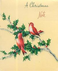 A CHRISTMAS NOTE above two red birds perched on holly, cream or yellow background