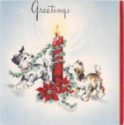 GREETINGS  2 puppies wrap giant red candle in holly garland, poinsettias, red panel right