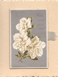 WITH EVERY GOOD WISH above right, white camelias on grey background, mounted on stand up card