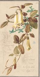 VERY HAPPY MAY IT BE CHRISTMAS TIME TO THINE AND THEE, white fuchsia cascading down
